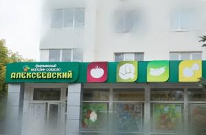 Проект вывески магазина «Алексеевский» по ул.К.Маркса, 9/1 в г.Уфа